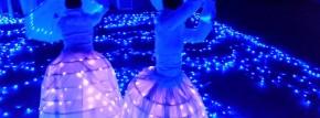 GlowyStella